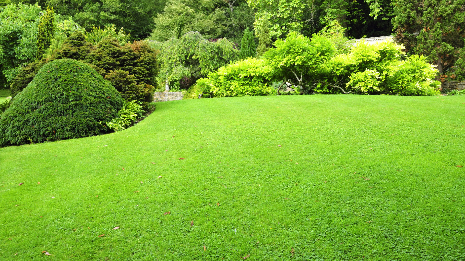 Columbia-lawn-care-choice-services-MD